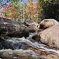 maine 29 Baxter State Park Trailside Stream by Terri Winkler