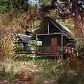 Makalaki Kruger Park South Africa by Joseph G Holland