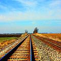 Making Tracks by Marie Jamieson