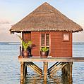 Maldives Villa by Jane Rix
