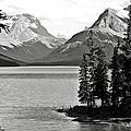 Maligne Lake by RicardMN Photography