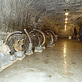 Mammoth Museum, Siberia by Ria Novosti
