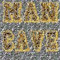 Man Cave Coin Mosaic by Paul Van Scott