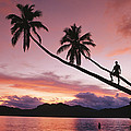 Man, Palm Trees, And Bather Silhouetted by Mark Cosslett