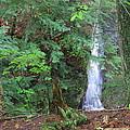 Manakiki Falls by Matthew Winn