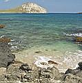 Manana Island View 0068 by Michael Peychich