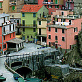 Manarola Houses On The Cinque Terre II by Greg Matchick