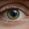 Mans Eye by Photo Researchers, Inc.
