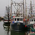 Many Fish Boats by Randy Harris