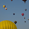 Many People Lift Off In Hot Air by Stacy Gold