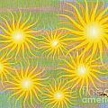 Many Suns by Rod Seeley
