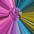 marabou Colour Splash by Steve Purnell