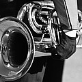 Marching Band Horn Bw by James BO Insogna