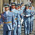 Marching Guards by Mariola Bitner