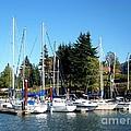 Marina At Cascade Locks by Charles Robinson