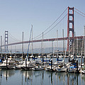 Marina At Golden Gate by Wes and Dotty Weber