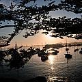 Marina At Sunrise by Paul Beckelheimer