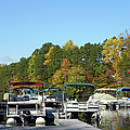 Marina In Fall by Sandi OReilly