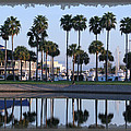 Marina Palms by Mike Moore