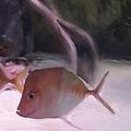 Marine Life by Usha Shantharam