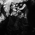 Marines Share A Foxhole With An Orphan by Stocktrek Images