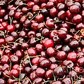 Market Cherries by Carol Groenen