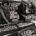 Market Days Choices by Dale Davis
