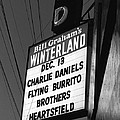 Marquee At Winterland In Late 1975 by Ben Upham III