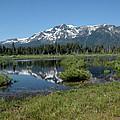 marsh Flowing to Lake Tahoe by LeeAnn McLaneGoetz McLaneGoetzStudioLLCcom
