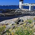Marshall Point Lighthouse Summer Flowers by John Burk