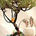 Marshmallow Bunny by Heather Applegate