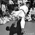 Martial Arts I by Jeff Breiman