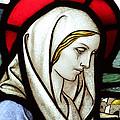 Mary Tears by Munir Alawi