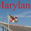 Maryland Stadium by Christopher Kerby