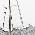 Mast Head by Hannah Breidenbach