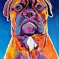 Bullmastiff - Lexi by Alicia VanNoy Call