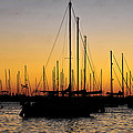 Masts At Sunset by David Lee Thompson