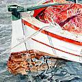 Matricola 2ca 970 by Giovanni Marco Sassu