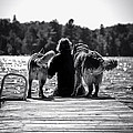 Matt On Dock With Otto And Iggi by Melissa  Connors