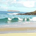Maui Hawaii Beach by Rebecca Margraf