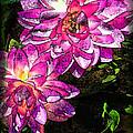 Maui Pink Garden by Joan  Minchak