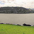 Mcandrew Bay Nz by C H Apperson
