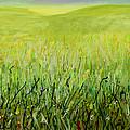 Meadow Four by Lynne Taetzsch