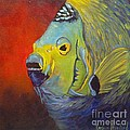Mean Green Fish by Barbara Haviland