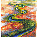 Meandering River In Northern Australian Channel Country by Dai Wynn