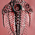 Mech-trilobite 4 In Anaglyph 3d by Baron Dixon