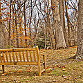 Meditation At Valley Forge by Trish Tritz