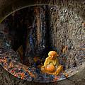 Meditation by Ginny Schmidt
