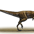 Megapnosaurus Kayentakatae by Sergey Krasovskiy