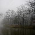 Melancholy Foggy Evening by Jenny Gandert